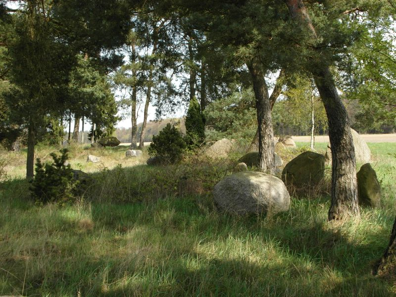 Steingräber-Feld