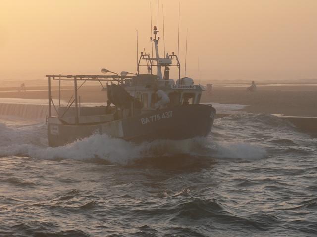 2010F031Schiff