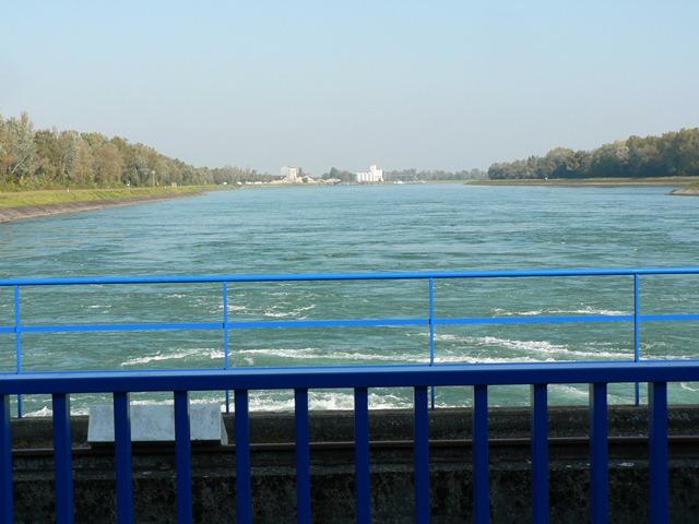 Barr2011 075 Rhein2