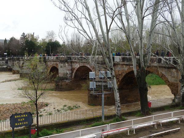 die Brücke über den Rio Bernesga