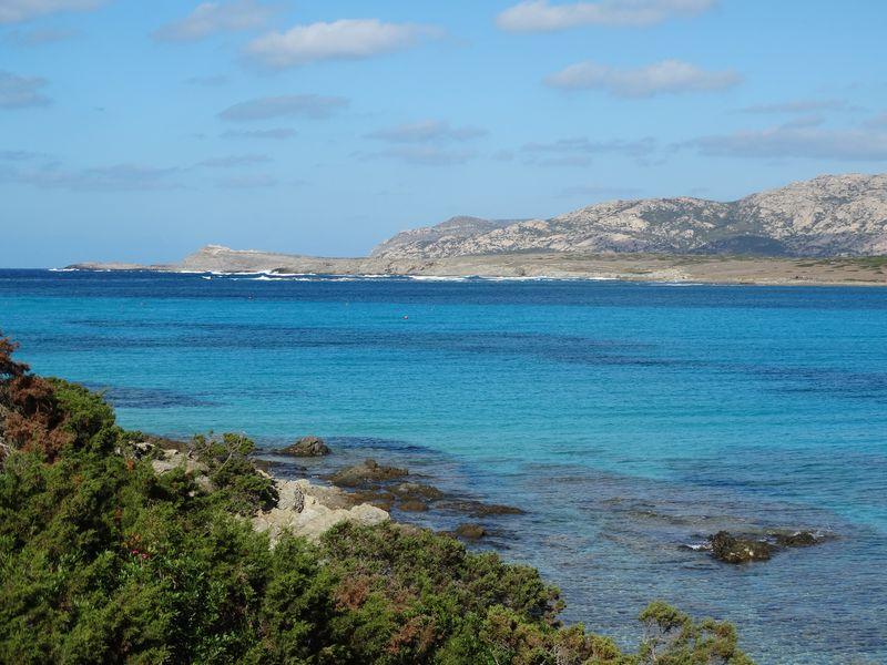 """im Hintergrund ist die ehemalige Gefangenen-Insel """"Isola Asinara"""""""